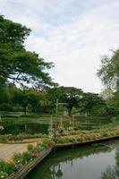 puente de bambú en el jardín foto