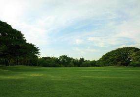 Lush green lawn photo