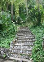 Natural stone stairs in garden photo