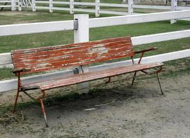 Worn wood bench
