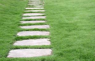 Walking stones in garden