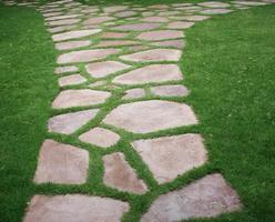 Walking stones in grass