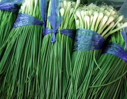 Group of green onions