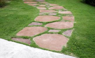 Walking path in grass