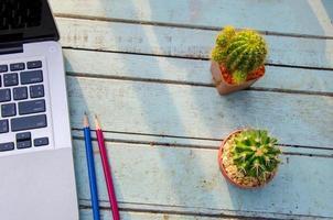 computadora y cactus