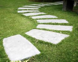 Stepping stones in garden
