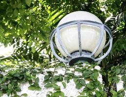 Fence with lamp photo