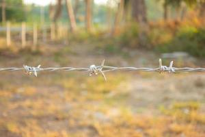 Security barbed wire photo