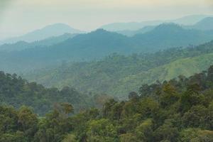 montañas y bosques por la mañana foto