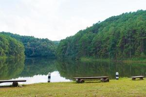 Forest and reservoir in Thailand photo
