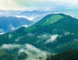 montañas y bosque foto