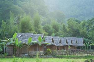 cabañas en el bosque en tailandia foto