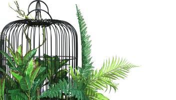 hojas verdes y jaula de pájaros