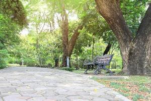 Bench in public park