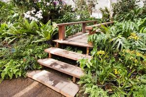 Wooden staircase walk in the park