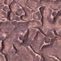 Rugged stone surface