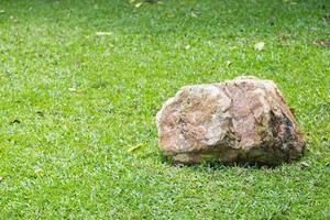 roca en la hierba