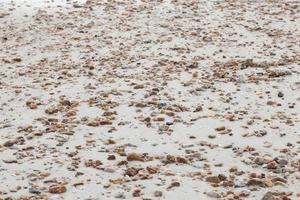 pequeñas piedras en la arena foto