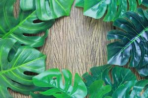 Monstera leaf frame on wood photo