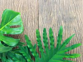 Tropical leaves on wood photo