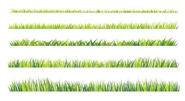 Grassland border vector pattern. Green lawn in spring. The concept of caring for the global ecosystem