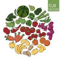 vegetable sphere vector
