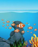 Many exotic fishes cartoon character in the underwater background vector