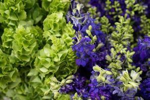 flores verdes y moradas