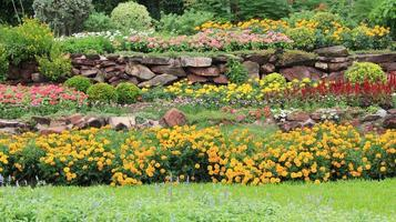 Beds of flowers