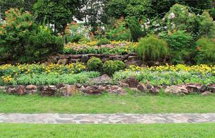 macizos de flores de colores y camino