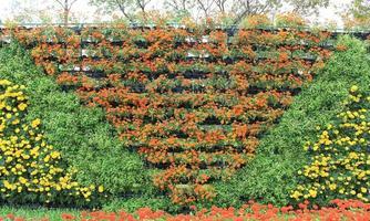 Vertical flowers in a pattern