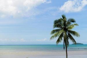 playa de verano en tailandia foto
