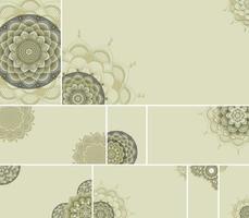 Beautiful colour mandala background vector