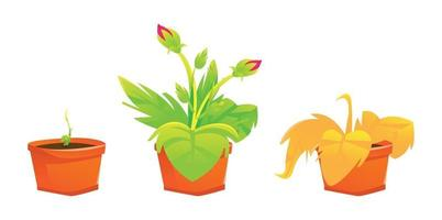 Set plant illustration colorfull
