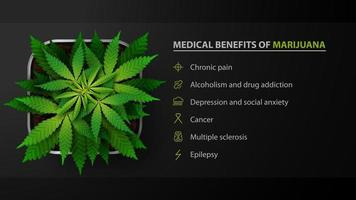 Medical benifits of marijuana, black poster with bach of cannabis in a pot, top view