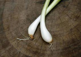 Two green onions on wood