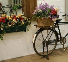 bicicleta con flores en la canasta