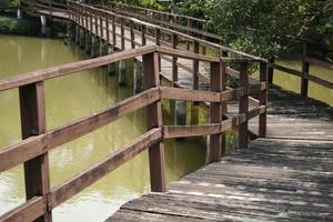 puente sobre el estanque en el parque