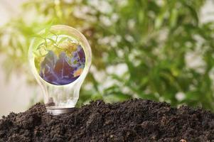 Earth in light bulb grow up from soil photo