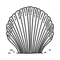icono de concha tropical. Doodle dibujado a mano o estilo de icono de contorno vector