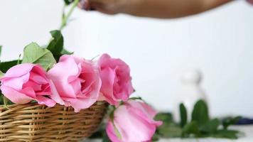 garota colocando rosas cor de rosa na cesta feliz