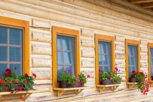 Coloridas flores en macetas en un alféizar de madera en una cabaña en Eslovaquia