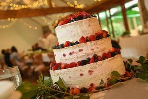 Rustic berry cake photo