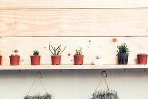 decoración del hogar retro y flores y en un estante de pared