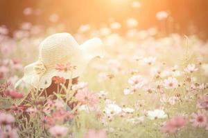 mujer, llevando, un, sombrero rojo, en, un, campo de flores