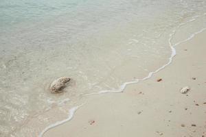 playa y piedras