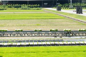 Equipment on the rice farm