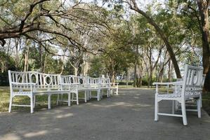 Benches on a pathway