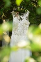 vestido de novia blanco colgando de un árbol