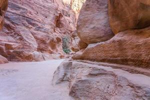 canyon siq ubicado en rose city, petra. Jordán